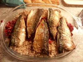 mackerel-dish1